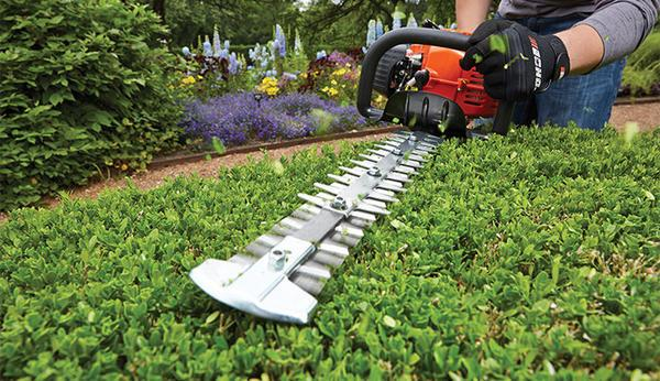 hedge trimmer in action